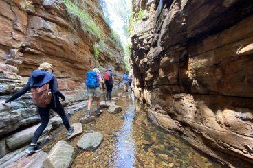 Flinders Ranges Walking Tours