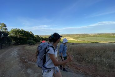 Clare Valley Walking Tours